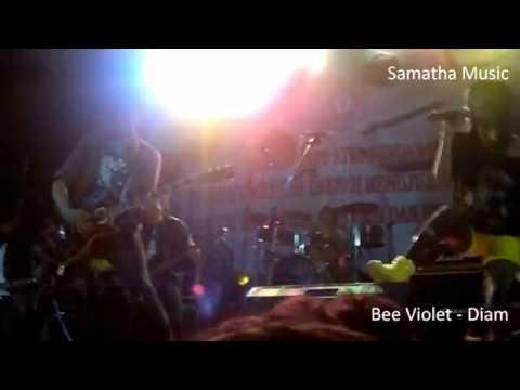 Bee Violet Diam