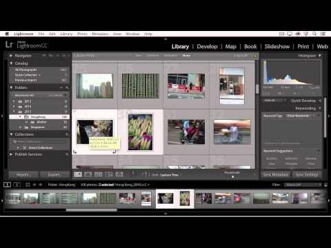 Lightroom CC -  Organizing Your Photographs