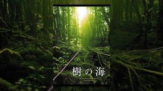 """霊峰富士の麓に広がる広大な緑の海・青木ヶ原樹海。この""""樹の海""""を舞台..."""