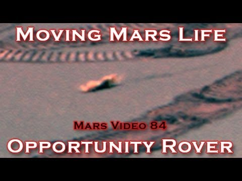 Moving Lifeform Caught by Opportunity Rover on Mars!