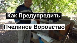 Пасека #129 Профилактика против пчелиного воровства \ Эксперимент \ пчеловодство для начинающих