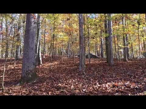 Waterfront Lot for Sale in Raintree in Alexander City at Lake Martin Alabama