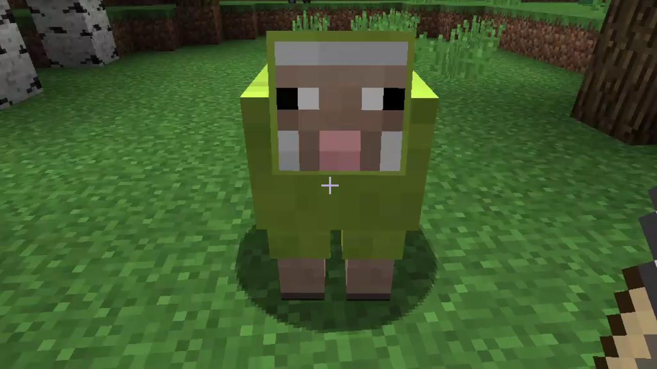 Minecraft Schafe Farbe ändern YouTube - Minecraft chat namen farbe andern