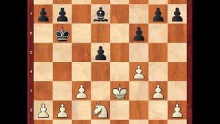 Шахматы. ЭНДШПИЛЬ и почему его нужно изучать