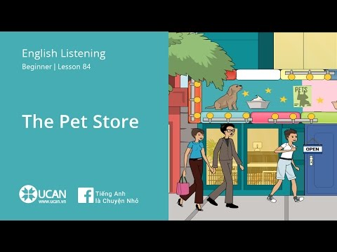 Learn English Listening | Beginner - Lesson 84. The Pet Store
