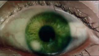 Kilómetro 31 (Trailer)