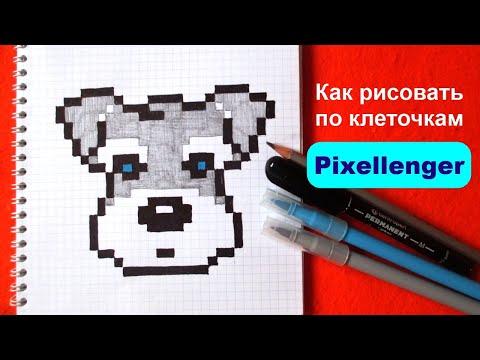 Как рисовать по клеточкам Собачку Простые рисунки How to Draw Dog Simple Pixel Art