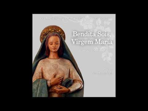 Coro do Seminário Cristo Rei dos Olivais - Louvada seja a Virgem Santa Maria  (official audio)