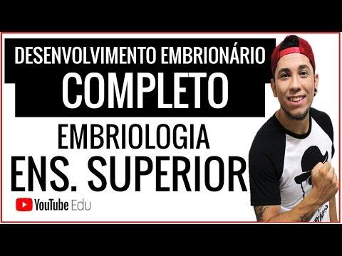 DESENVOLVIMENTO EMBRIONÁRIO COMPLETO - DA 1º A 8º SEMANA - P/ ENSINO SUPERIOR
