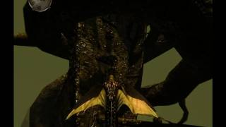 let s play divinity ii ego draconis part 83 ship on a tree