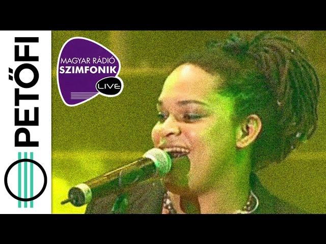 irie-maffia-busaman-pretty-little-song-es-bloodshot-eyes-szimfonik-live-2-0-petofi-radio-nagyon-zene