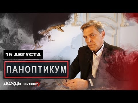 Невзоров и Уткин в программе «Паноптикум» на «Тв Дождь»  из студии  Nevzorov..tv 15.08.19
