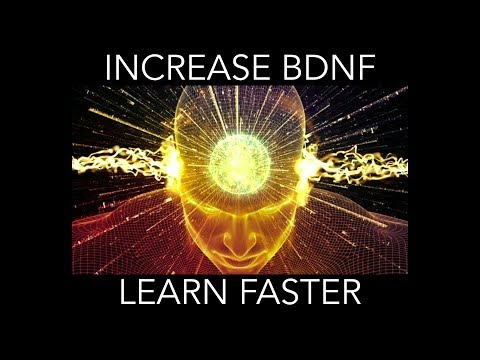 How to increase BDNF