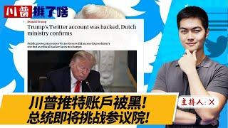 川普推特账户被黑! 总统即将挑战参议院!《总统推了啥》2020.12.17 第234期 - YouTube