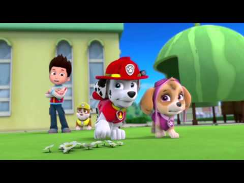 Marshall (from PAW Patrol) in action (hall of fame)
