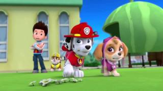 (PAW Patrol action of fame (hall den) Marshall