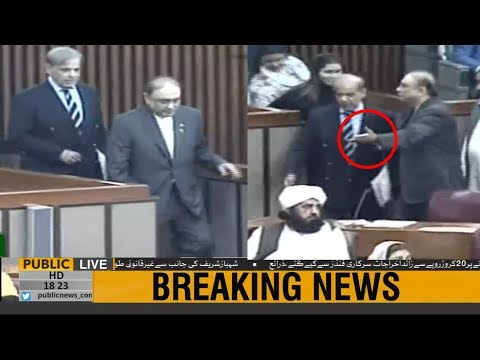 Asif Ali Zardari and Shehbaz Sharif arrive in National Assembly together