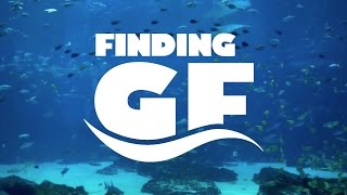 [Finding GF] Series Trailer