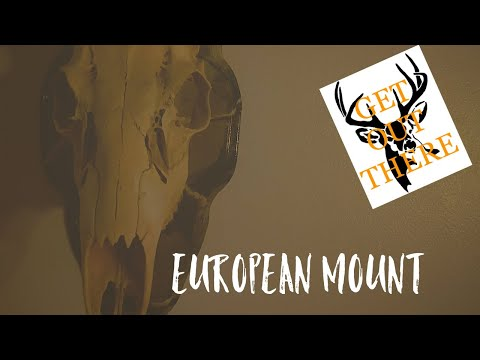 European Mount start to finish