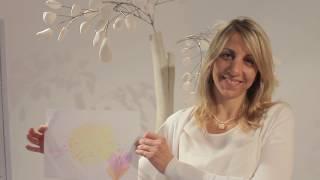 Projecto Ana Sanona video