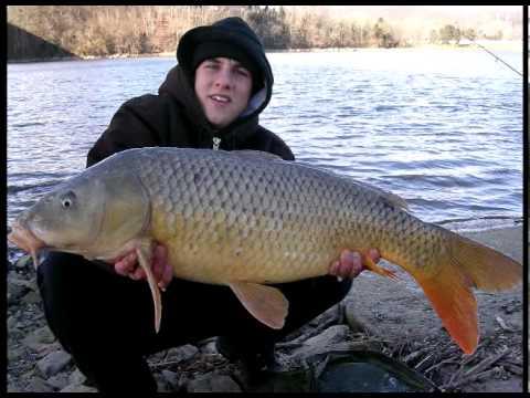 Winter River Carp Fishing - YouTube