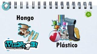 Breves: Hongos que degradan plástico