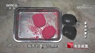 毒枭的覆灭【今日说法  20170918】