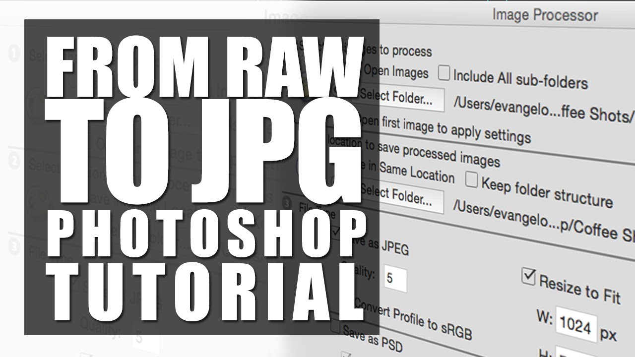 How to quickly speed up your editing workflow by batch editing in.