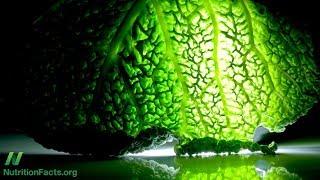 Předcházení Alzheimerově chorobě s pomocí rostlin