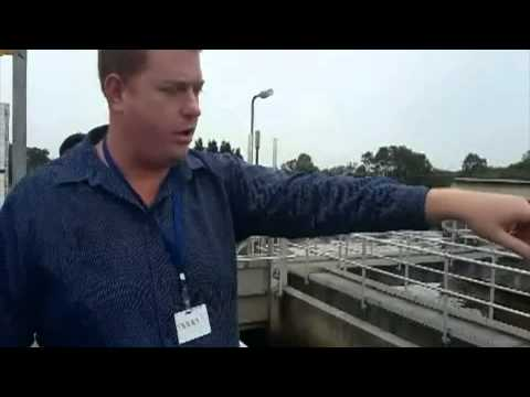 Cleveland Wastewater Treatment Plant: Field trip Report