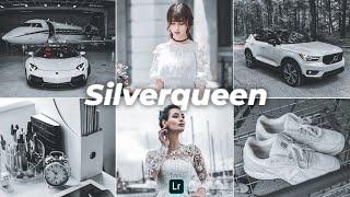 Silverqueen Presets - Lightroom Mobile Presets   Grey Preset   Urban Presets   Urban Photography