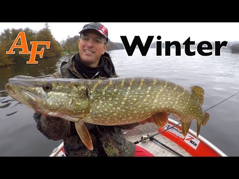 Pike Fishing UK Lake Windermere 2018 Ft River Piker Pike Fishing In Winter EP.385