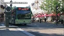 Busse der Baden-Baden Linie