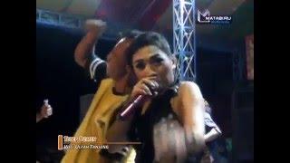 Tetep Demen Versi DJ - Ulfa- Afita Nada Live Ciledugtengah 11-2-2016.mp3