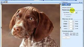 Обработка изображений в программе  Picture Manager.mp4(Обработка фото и изображений в программе Microsoft Office Picture Manager Мои блоги: http://wnowosti.ru/ http://pensioner-i-komputer.com/, 2012-01-30T18:48:57.000Z)