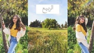 معقول هذا بلد عربي؟