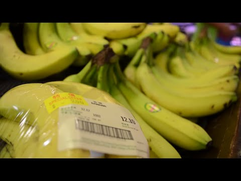 Fairtrade Bananas | Documentary Short Film