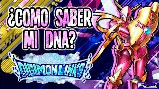 ¿Como saber mi DNA? ¡Guia de Digimon Links!