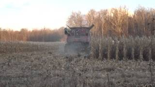case ih 7120 combine doing some corn harvesting in pittsfield charter township