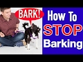 How To Train Your Dog To Stop Barking! video