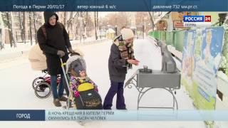 Памятник бездомному коту за месяц собрал 28 тыс рублей