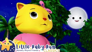 Cat And Mr. Moon Play Hide And Seek   Little Baby Bum Animal Club   Fun Songs for Kids