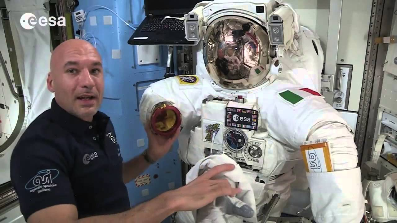 first esa astronaut in space - photo #18