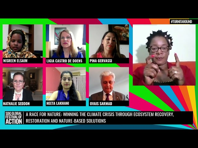 A Race For Nature: Winning Climate through Ecosystem Recovery, Restoration & NBS (French)