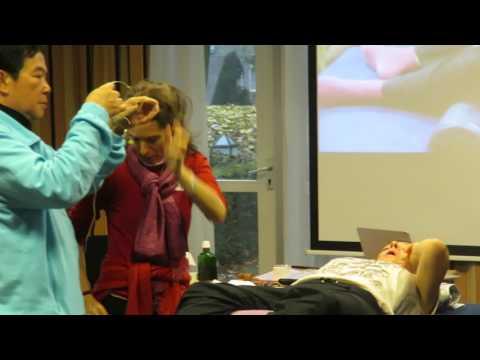 Life Pulse Massage CNT 5 by Aisha Sieburth and Master Mantak Chia at Qing Bao Institute, Amersfoort