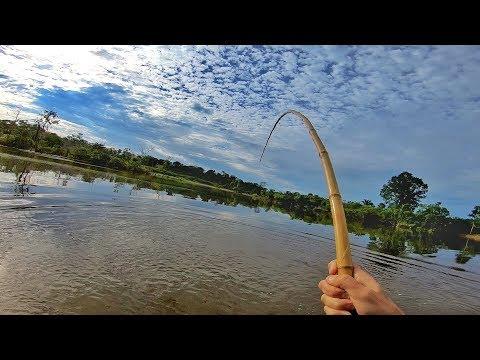 Era para ser uma simples pescaria com VARA DE BAMBU…