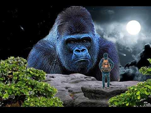 king of jungle || manipulation in background || photoshop tutorial |
