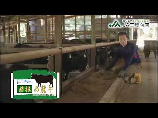 【MEDIA】JA三島函南のCMにわたなべだいすけが出演!