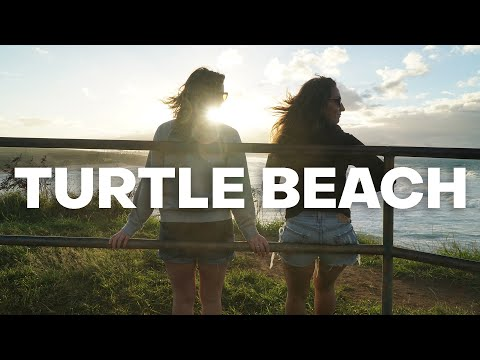 maui-turtle-beach:-where-to-see-turtles-on-maui---the-detourist-guide-to-travel---maui-|-ep.-14