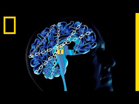 The Science of Addiction: Here's Your Brain on Drugs  National Geographic